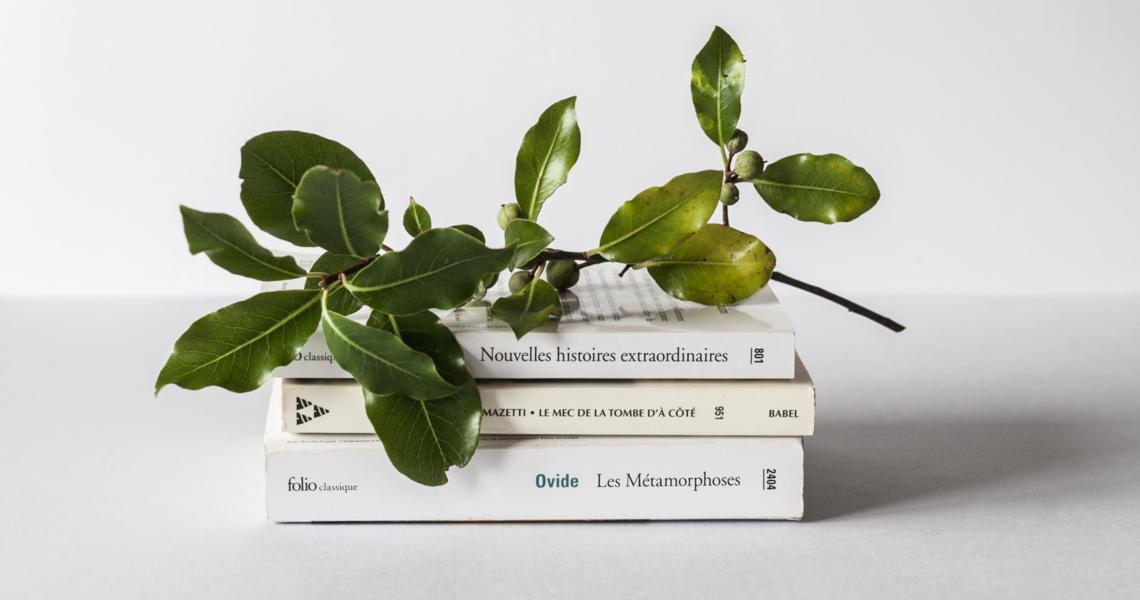 12 книг в год, читать меньше, список книг, эксперимент, читатель, что почитать, год без покупок